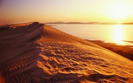 Abenteuer Wüste